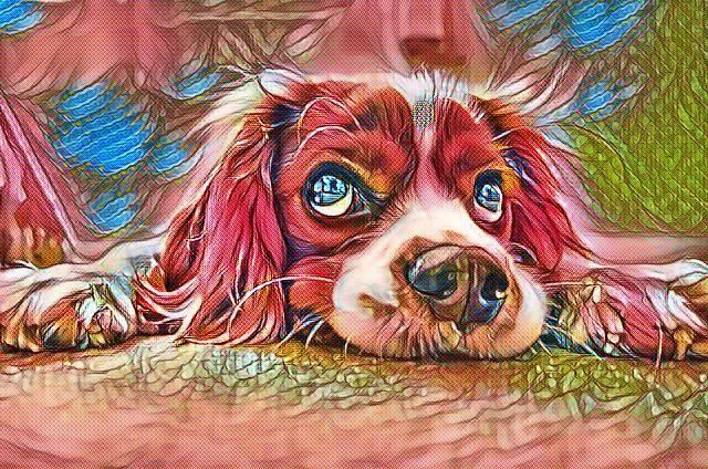 Arti Idiom DOG EAT DOG