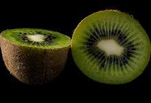 kiwi-1432088_640